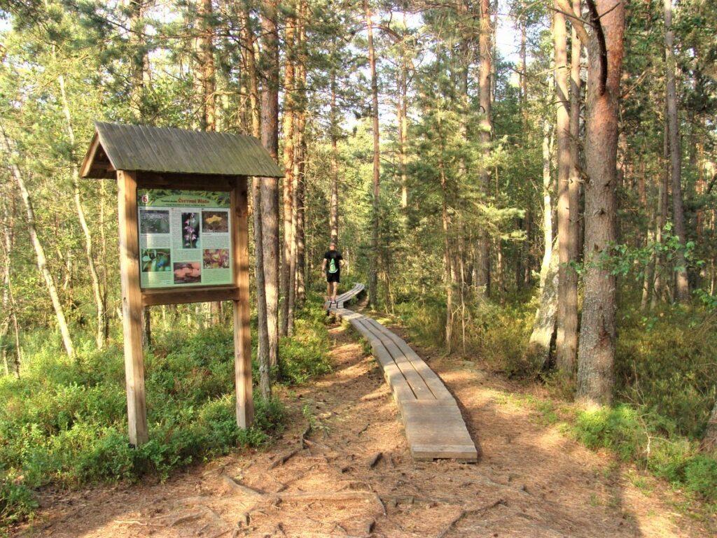 Přírodní rezervace Červené blato
