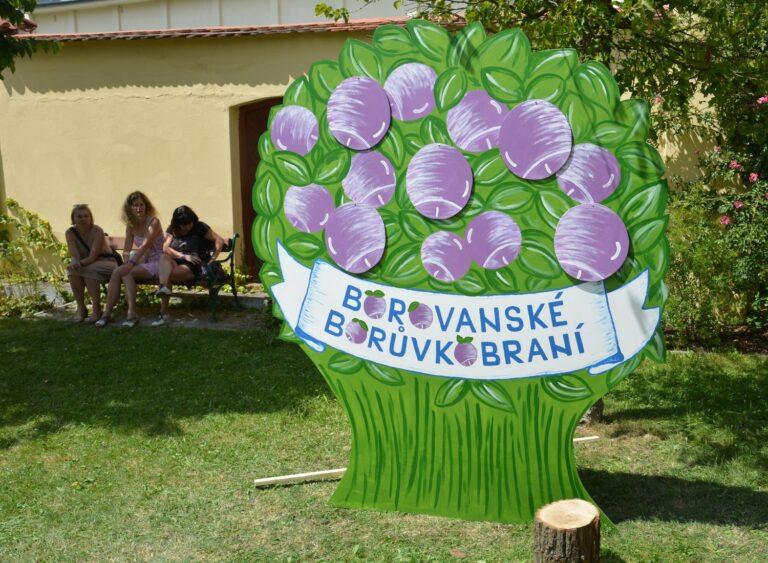 Borovanské borůvkobraní