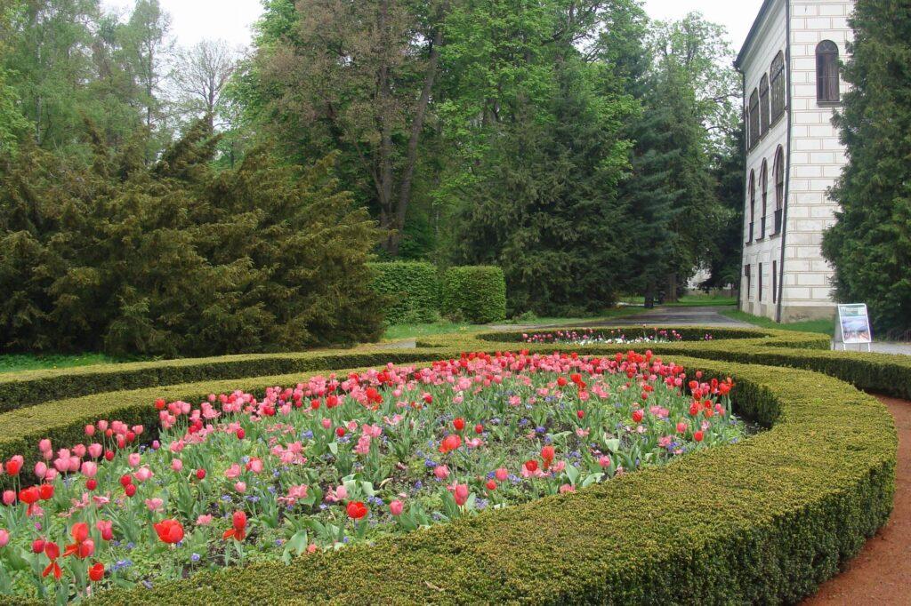 Jaro v parku Zámku Třeboňboň